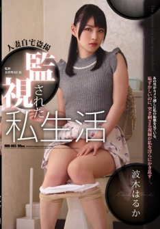 Housewife Home Voyeurs Monitored Personal Life Waki ​​Haruka